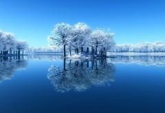 Широкоформатное фото прекрасных деревьев на зимнем оз…