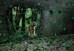 Тигр, фэнтези, природа, заставки, животное, картинки
