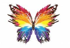 Бабочка абстрактные красочные узоры обои hd бесплатно