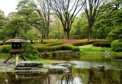 Картинка великолепного парка