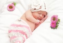 Маленькая девочка спящая с цветами