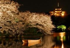 Озеро, лодка, деревья вишни, башни, ночные огни, пейзаж, …