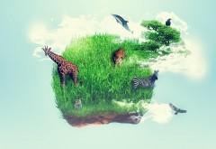 Остров, трава, жираф, животное, воображение, зебра, обои…