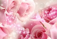 Праздник, широкоформатные обои HD, цветы, открытка, свадьба, заставки