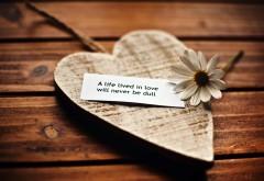 Красивая любовь цитатой широкоформатные обои hd для ра�…
