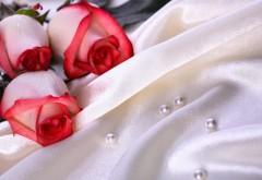 Свадебные фоны на рабочий стол скачать