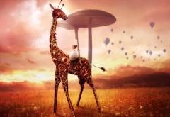 Сказочный жираф с девочкой маленькой широкоформатные …