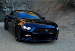Ford Mustang, Форд Мустанг, автомобиль, машина, спорт, фото