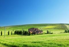 Голубое небо, трава, дома, телефонные столбы, зелень, природа, пейзаж, картинки, обои