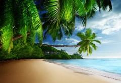 Тропический рай, солнце, песок, берег, океан, голубое не…
