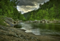Фото высокого разрешения длинной реки в окружении зеленого леса
