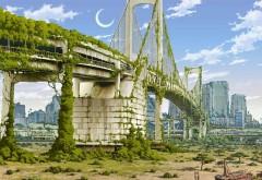 Заросший в плюще мост