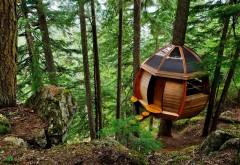 Широкоформатные обои с деревянным современным домико�…