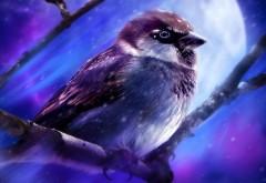 Животные, птица, художественная роспись, луна, картинк�…