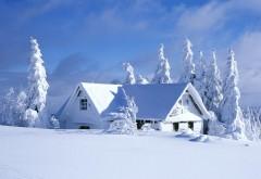 Снежный дом в лесу обои для рабочего стола