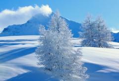 Красивый зимний ландшафт обои для рабочего стола