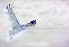 Летящая птица абстрактные обои для рабочего стола
