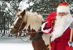 HD обои, Дед Мороз, лошадь, снег, зима, посох, лес, Новый год, рождество