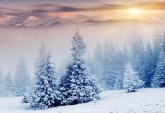 Снежный ландшафт обои для рабочего стола