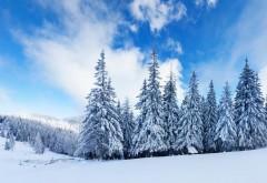 Зимние горные изображения высокого качества обои для �…