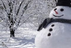 Прикольный снеговик в лесу зимой обои скачать бесплатно
