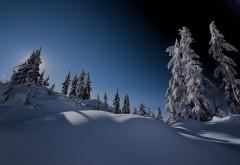 Склон, гора, зима, снег, лес, небо, обои для рабочего сто�…