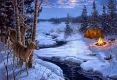 Тени, живопись, зима, снег, животные, олень ,картинки дл�…