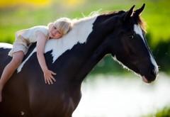 Ребенок сидит на коне широкоформатные обои
