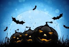 Хэллоуин, тыква черная, ночь, праздник, обои
