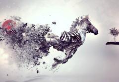 Абстрактная зебра