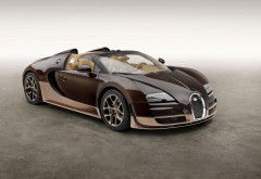 2014 Bugatti Veyron Grand Sport Vitesse Legend спорткар