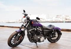 Мотоцикл 2014 Harley Davidson Xl883n Iron 883