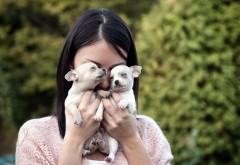 Девушка держит щенков в руках