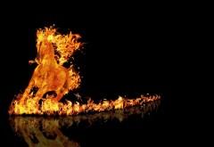 Огненная лошадь на черном фоне
