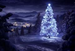 Новогодняя елка в лесу