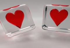 Сердца в стеклянных кубах