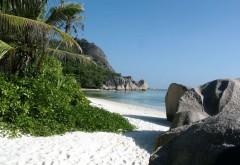 одинокий пляж бесплатно фото