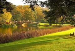 Парк, озеро, дорога, мост, деревья, пейзаж, осень, картин…