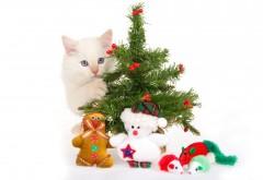 Белый котенок спрятался за елкой