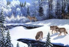 Волки на реке