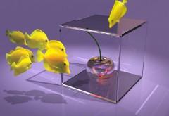 рыбки, куб, вишня, 3d