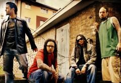 korn, Музыкальная группа, парни