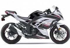 Kawasaki Ninja 300 Abs Gs Высококачественные фотографии