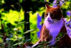 абстрактные фрактальные изображения кота