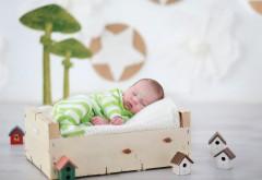 красивый ребенок спит с домом