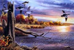 птицы, искусство, фотогалерея