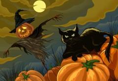Черная кошка и пугало праздник Хэллоуин