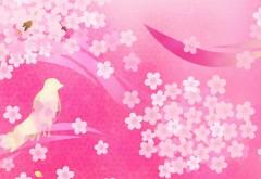 Фоны птицы и цветы розового цвета