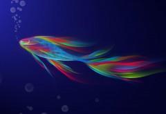 полупрозрачная рыба фоны скачать