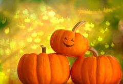 Cool Photography Pumpkin Halloween